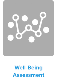Well-Being Assessment
